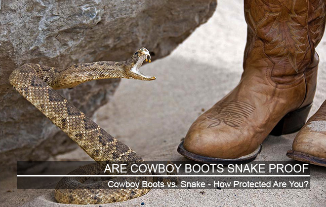 Are Cowboy Boots Snake Proof - What You Need To Know